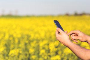 digital agriculture afrique