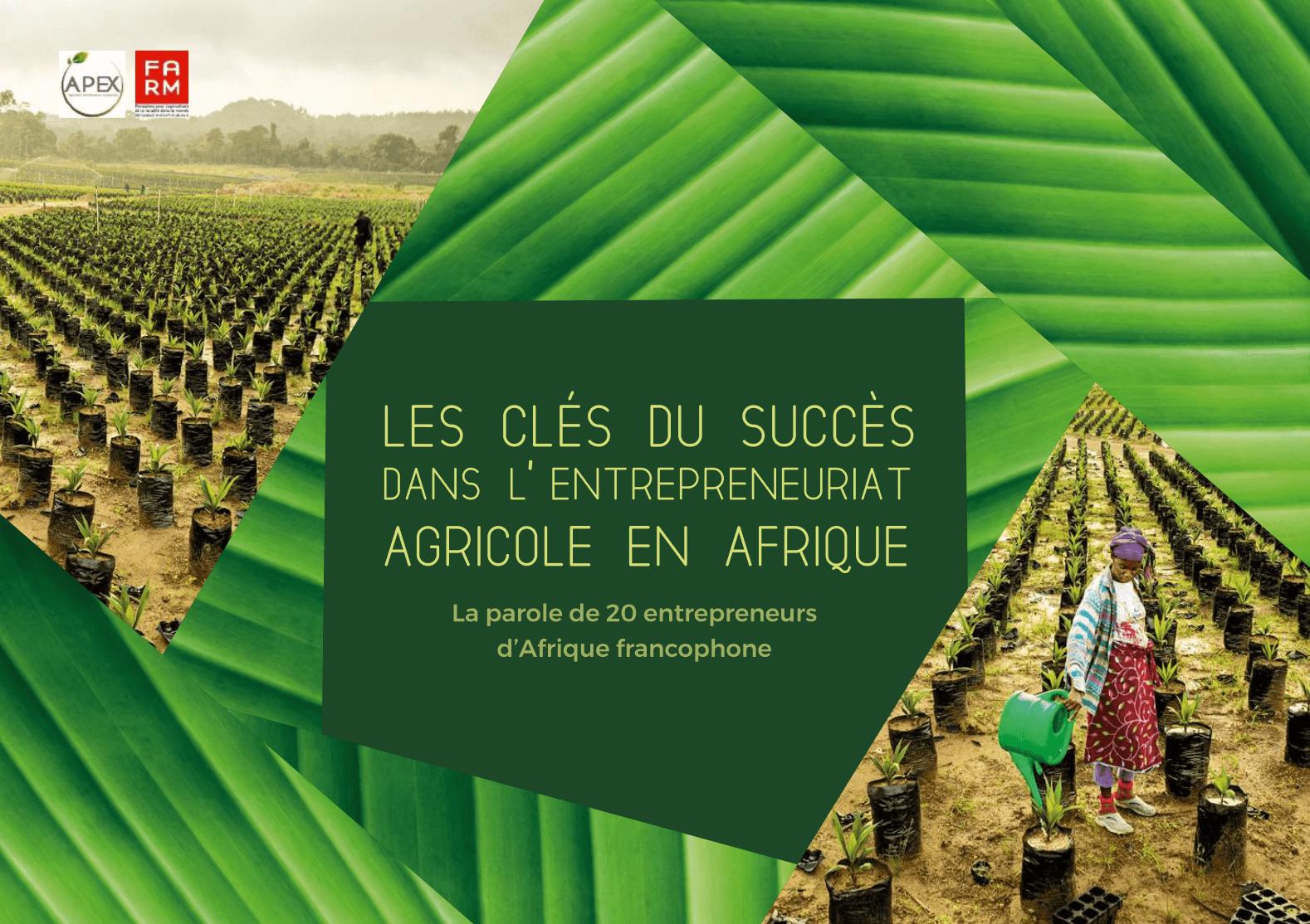 Notre dernière étude : Les clés du succès dans l'entreprenariat agricole en Afrique