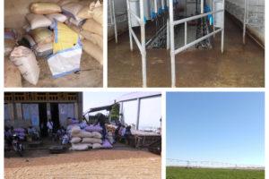 L'Afrique a besoin de sources de financement pour assurer la production, l'irrigation, le stockage...